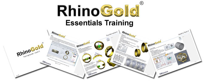RhinoGold 4.0 Essentials – Training for Beginners